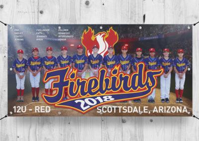 Firebirds-Banner